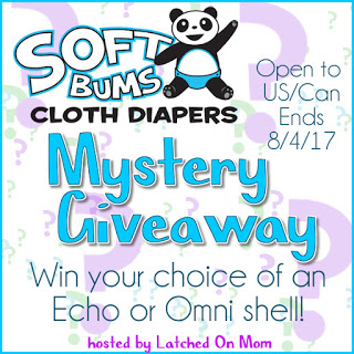 SoftBums Mystery Diaper Giveaway